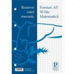 Rezerva caiet mecanic A5 50 file, matematica Pigna