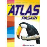 MIC ATLAS PASARI