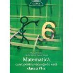 Matematica - caiet pentru vacanta de vara (clasa a Vi-a)
