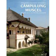 Campulung Muscel. Schite pentru o monografie arhitecturala