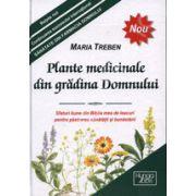 Plante medicinale din gradina Domnului