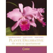 Plante decorative de seara si apartament