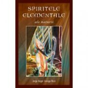 Spiritele elementale ale naturii