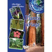 Plante uriase