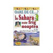 OARE DE CE...? IN SAHARA ESTE FRIG NOAPTEA
