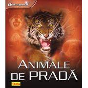 DESCOPERA ANIMALE DE PRADA