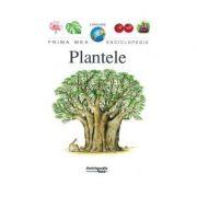 PLANTELE PME