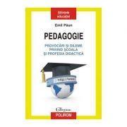 Pedagogie. Provocari si dileme privind scoala si profesia didactica