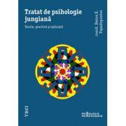 Tratat de psihologie jungiana Teorie, practica si aplicatii, Teorie, practica si aplicatii