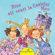 Pixi - Bine Ati Venit La Castelul Mov
