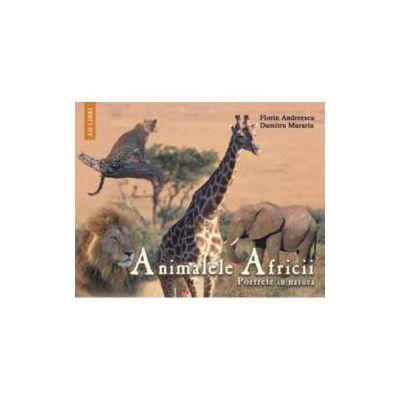 Animalele Africii Portrete in natura