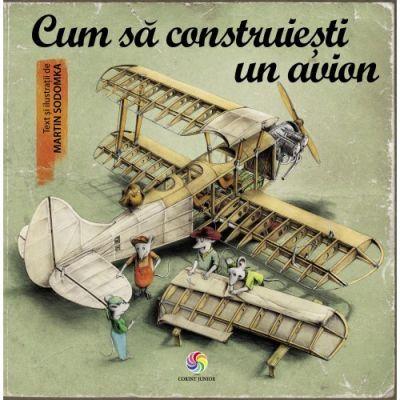 Cum sa construiesti un avion