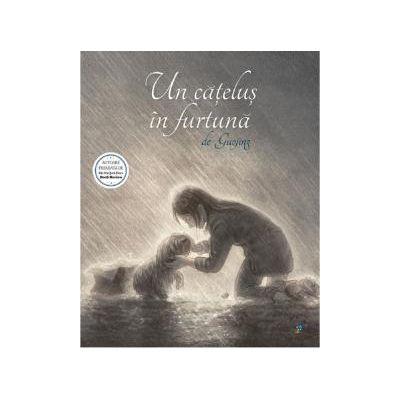 Un catelus in furtuna